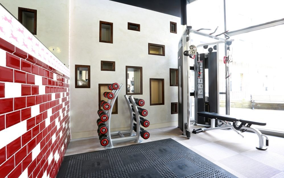 Tips for student gym design in small spaces m group